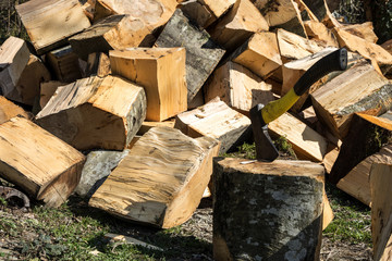 A large amount of wood before felling ax