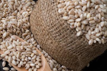 pearls barley grain seed on background.