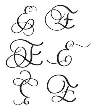 set of art calligraphy letter E with flourish of vintage decorative whorls. Vector illustration EPS10