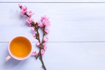 Cup of green tea and  branches of blossoming peach on lilac wooden table