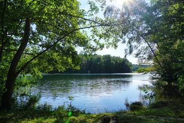 Schaalsee in Mecklenbrurg-Vorpommern
