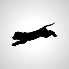 wild cat icon