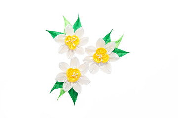 Wall Mural - Kanzashi. White artificial daffodils isolated on white backgroun