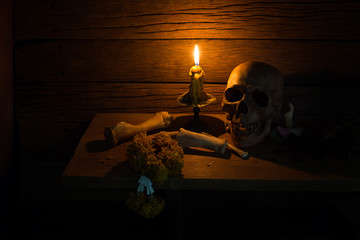 Skull and Bone on wooden plate in dim light with candlelight, Still Life and Select focus and visual art image..