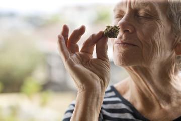 Senior woman smelling cannabis bud