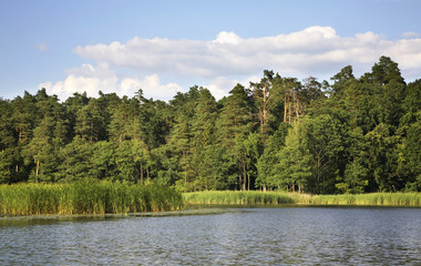 Rospuda lake near Augustow. Poland