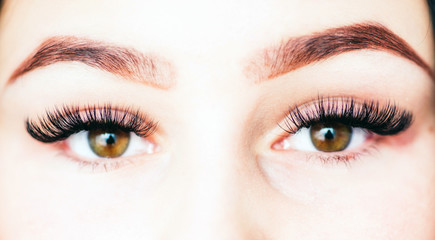 Artificial lashes. eyelash extension.
