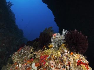 Inside the underwater cave, In der Unterwasserhöhle