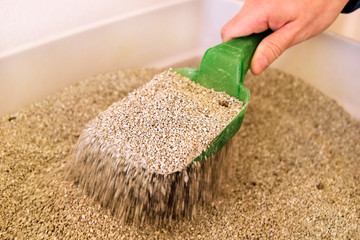 Cleaning cat litter box. Hand is cleaning of cat litter box with green spatula. Toilet cat cleaning sand cat.