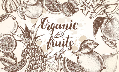 Background with Ink hand drawn citrus, tropical fruits and brush calligraphy style lettering. Template for design leaflets, labels, banners. Vector illustration.