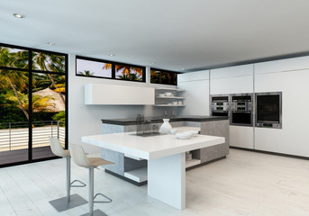 Modern clean white open plan kitchen interior
