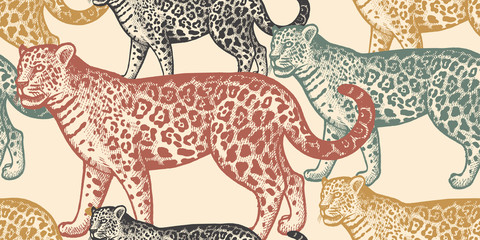 Seamless pattern with animal Jaguar.