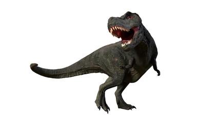 Tyrannosaurus rex roaring, anatomically correct T-rex dinosaur from the Jurassic period
