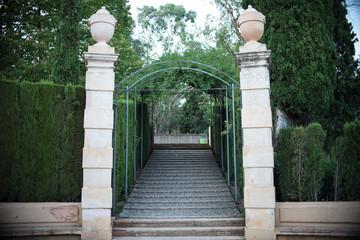Park Labyrinth