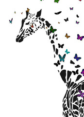 Vector silhouette of  giraffe with butterflies flying around.
