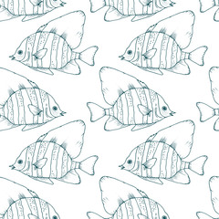 Vector seamless pattern with zebra fish, coral fish hand drawn colorful illustration. Sketch with striped boarfish, marine animal