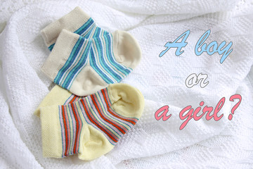 two pairs of baby socks: blue and yellow striped on crocheted blanket, white background with inscription a boy or a girl