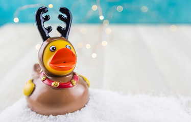 Rubber Duck Reindeer in Snow with Copy Space