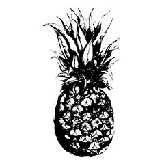 Monochrome pineapple fruit hand drawn sketched isolated vector