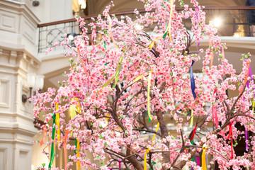 tree spring blooms white flowers Pink