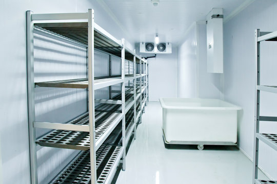 Refrigerating chamber in the store. Refrigeration equipment.