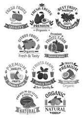Fruits icons for farm store or juice vector label