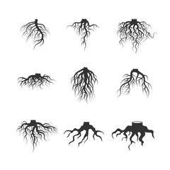 Tree and plant underground roots vector set
