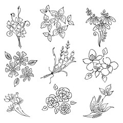 Vector floral set, graphic illustration. Flowers with leaves isolated on the white background. Hand drawn contour lines and strokes. Outline drawing