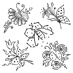 Vector floral set, graphic illustration. Ladubug, butterfly, bee , flowers with leaves isolated on the white background. Hand drawn contour lines and strokes. Outline drawing