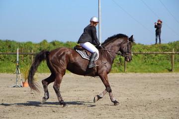 Cavalière à cheval lors d'un concours hippique
