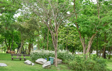 Stones, benches, trees in the park