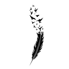 Black-and-white feather on white backround, vector illustration