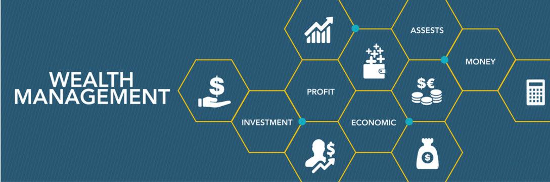 Wealth Management Icon Concept