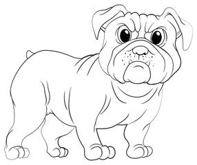 Doodles drafting animal for pug dog