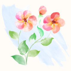 Beautiful flowers watercolor vector illustration for Mother's Day, wedding, birthday, Easter, Valentine's Day. Spring or Summer composition.