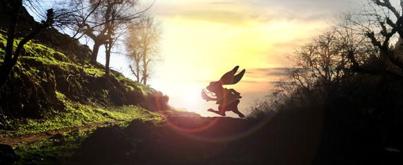 White rabbit running across horizon