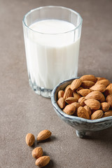 Dairy alternative milk. Almond milk in a glass bottle and fresh nuts over a gray background, selective focus. Clean eating, dairy-free, vegan, vegetarian, allergy-friendly, healthy food concept