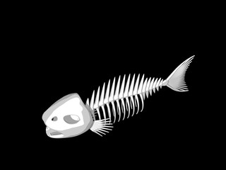Fish skeleton. Isolated on black background. 3D rendering illustration.