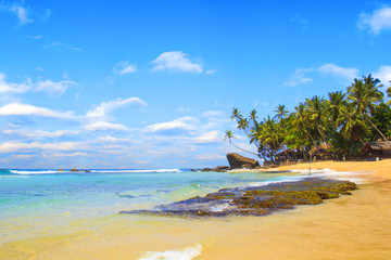 Beautiful view of the beach of Sri Lanka on a sunny day