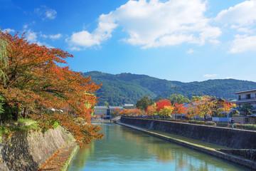 京都 岡崎 秋の琵琶湖疏水