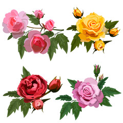 set with roses