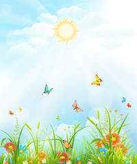 Summer background with green grass, flowers, butterflies and sky