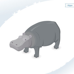 Hippo isolated on white background. Isometric view. Flat vector illustration.