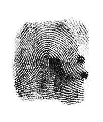 Black fingerprint on white background