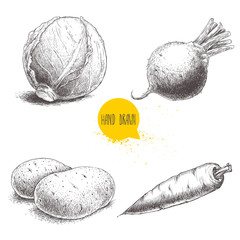 Hand drawn sketch style vegetables set. Cabbage, beet root, potatoes and carrot. Farm fresh food isolated on white background.