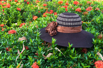 Hat weave hand on leaves green nature background (hat, ladies, straw)