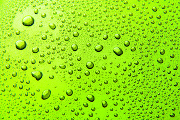 Drops of water on a color background. Green