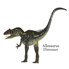 Allosaurus Dinosaur Tail with Font - Allosaurus was a carnivorous theropod dinosaur that lived in North America in the Jurassic Period.