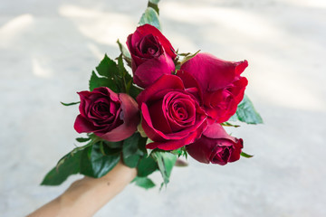 red roses bouquet in woman's hand.Valentine's day.