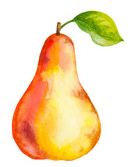 watercolor pear with green leaf on white